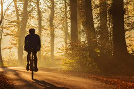 Silhouette of a biker in fall on a sunny afternoon